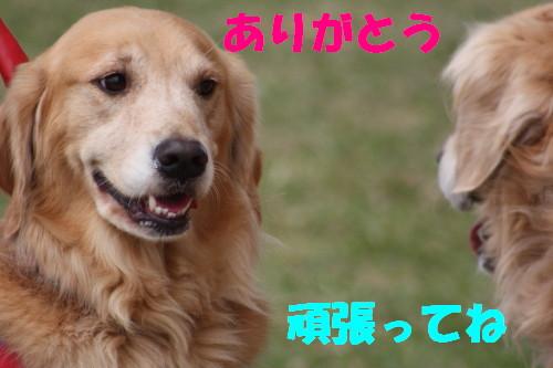 bu-58950001.jpg