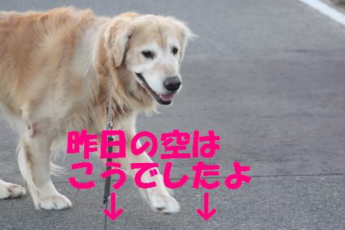 bu-59790001.jpg