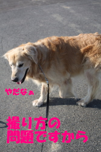 bu-59840001.jpg