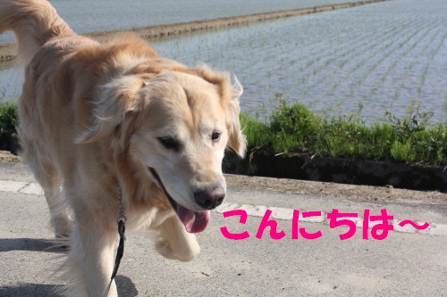 bu-69200001.jpg