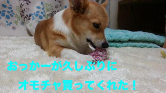 1_201312131006193cb.jpg