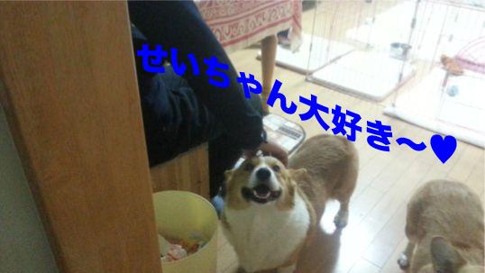 5_20131216100129b35.jpg