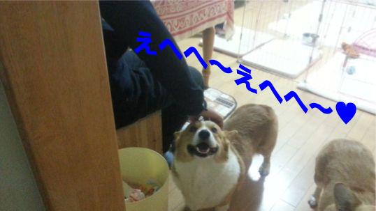 6_20131216101141e33.jpg