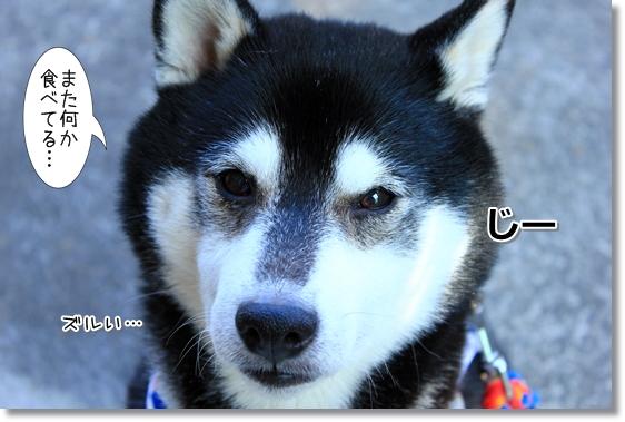 10_201401231806140b6.jpg