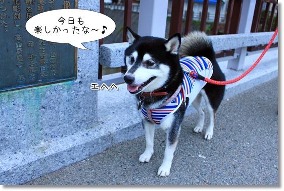 11_20131219215922e3b.jpg