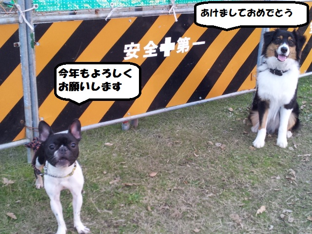 20140101_163827.jpg