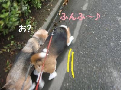 散歩 8 幅寄せ