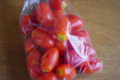 お土産 4 トマト