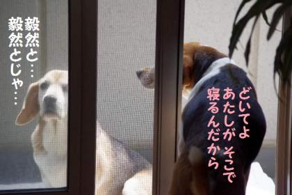 チェンジ 4 がんばれ!