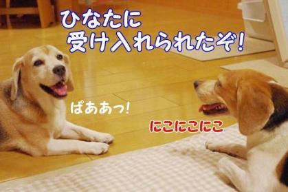 妄想 7 春