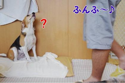 ホー? 4 おや?