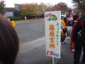 DSC13111009876.jpg