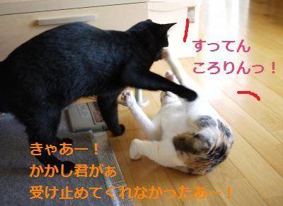 019_convert_20110602014733.jpg
