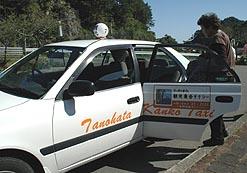 taxi101003.jpg