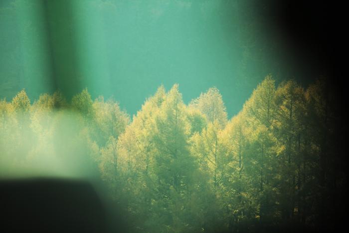 20111105_098.jpg