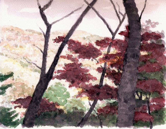 天王山遠望 (650x507)