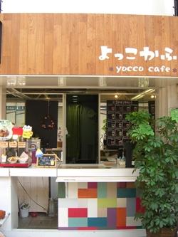 yocco1.jpg