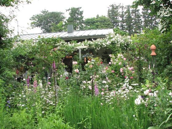 ガーデンカフェ・グリーンローズ2011_06#7