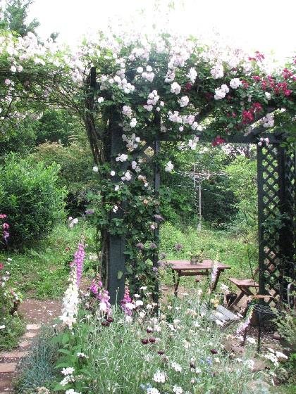 毛呂山の庭2011_06#5