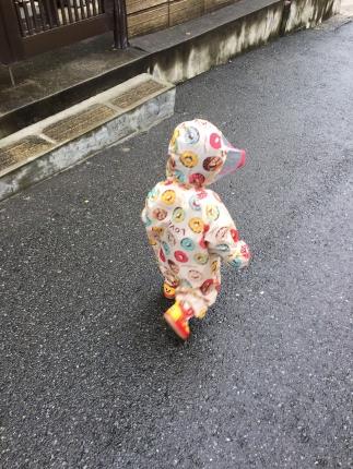 IMG_3120雨の散歩