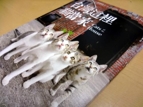 台湾の猫本