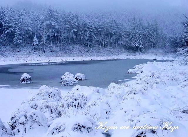 冬の情景1