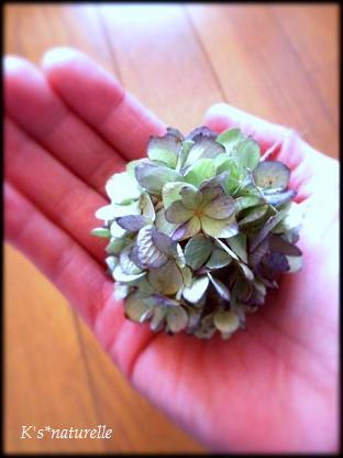 紫陽花ボールミニ1