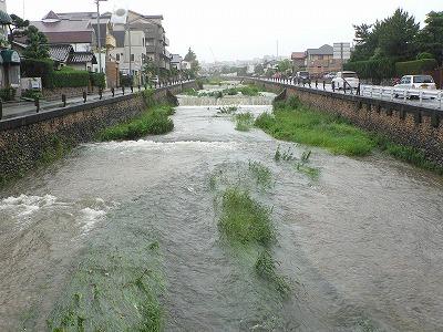 逆瀬川5月29日