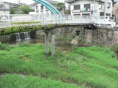 近くの橋の下と上で測定110827