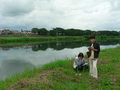 白石川千本桜沿いの河川敷