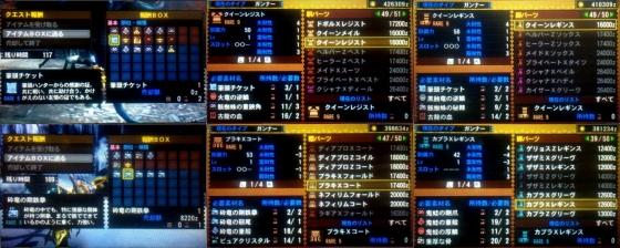 mh4g25-9-1.jpg