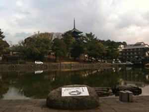 sarusawa0225_convert_20110225110203.jpg
