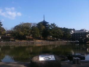 sarusawa0226_convert_20110226105408.jpg