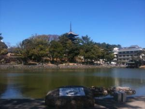 sarusawa0404_convert_20110404145708.jpg