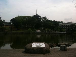 sarusawa0801_convert_20110801113457.jpg