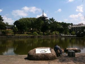 sarusawa0827_convert_20110827110631.jpg