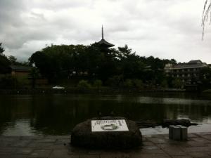 sarusawa0904_convert_20110904110122.jpg