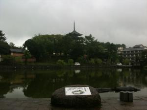sarusawa0905_convert_20110905104019.jpg