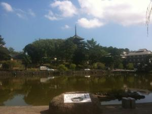 sarusawa0914_convert_20110914103301.jpg