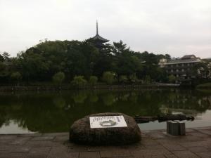 sarusawa1004_convert_20101004110810.jpg