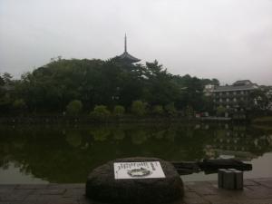 sarusawa1025_convert_20101025115619.jpg