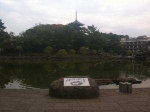 sarusawa1107_convert_20101107110545.jpg