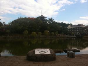 sarusawa1110_convert_20101110111121.jpg