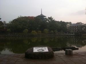 sarusawa1112_convert_20101112135908.jpg