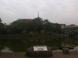 sarusawa1114_convert_20101114152115.jpg