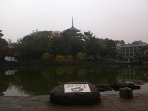 sarusawa1122_convert_20101122112430.jpg