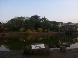 sarusawa1128_convert_20101128114603.jpg