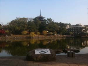 sarusawa1129_convert_20101129114706.jpg
