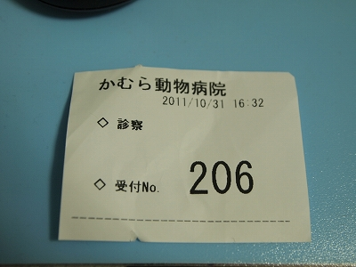 PA318392.jpg