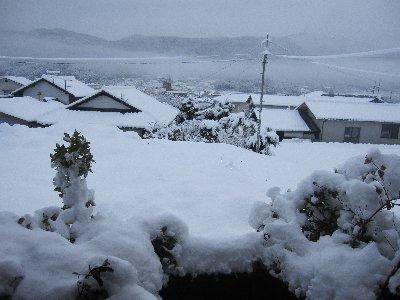 雪2月11日
